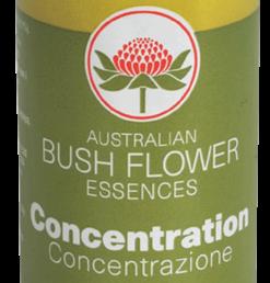Memoria e Concentrazione come aumentarle con l'aiuto degliAustralian Bush Flowers